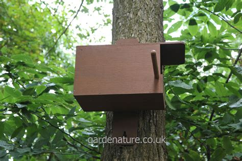 Kestrel Box With Wireless Camera