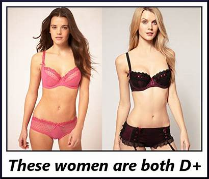 Bra Cup Sizes Bust Looks Without Cups