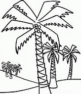 Palm Coloring Tree Pages Trees Coconut Drawing Outline Easy Date Line Beach Palms Lot Getdrawings Popular Adults sketch template