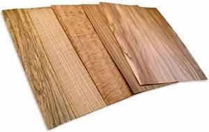 Habiller Une Porte Intérieure : 1000 id es sur le th me placage en bois sur pinterest ~ Dailycaller-alerts.com Idées de Décoration