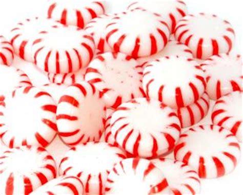 photo candy circle