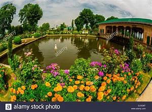 Shalimar Bagh (a Mughal Garden), near Srinagar, Kashmir ...