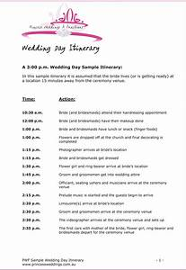 Wedding Weekend Timeline Template Expert Cat Care Advice From The Pros You Can Find Out
