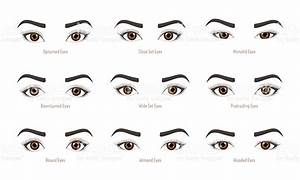 Types Of Woman Eyes Collection Set Of Vector Eye Shapes ...