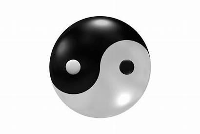 Yang Yin Moving Brain Mindpersuasion Always Living