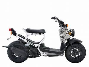 Honda Scooter Pictures  2007 Honda Ruckus Specifications