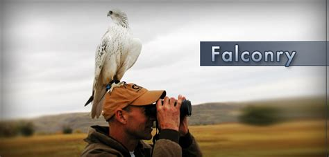 Home page Falconry and Telemetry Equipment