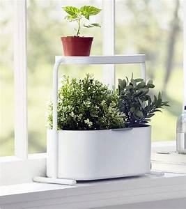 Jardiniere Interieur : jardini re d 39 int rieur ~ Melissatoandfro.com Idées de Décoration