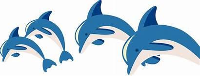 Dolphin Marine Biology Clipart Cartoon Transparent Dolphins