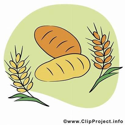 Clipart Brot Getreide Kommunion Kostenlos Communion Backen