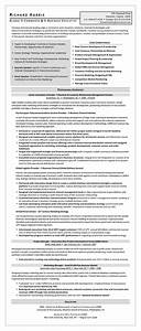 sample resume global e commerce e business executive With ecommerce resume sample