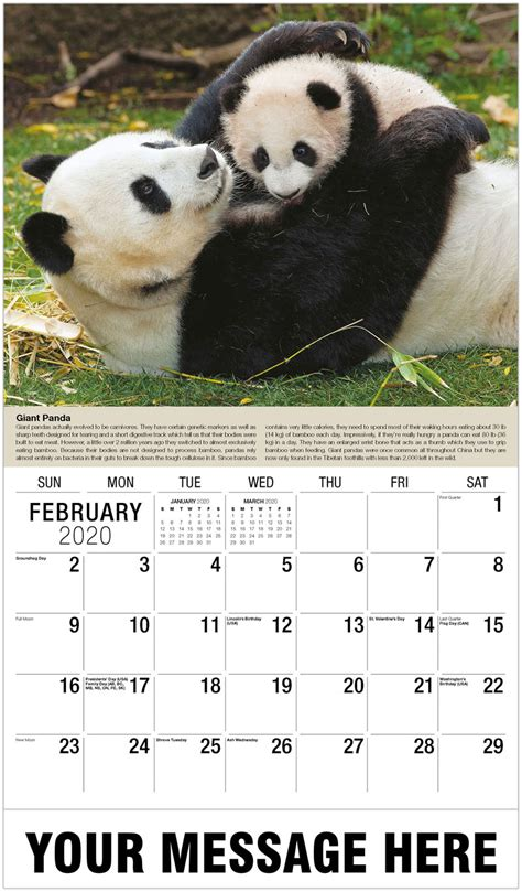 international wildlife business promo calendar promotional calendars