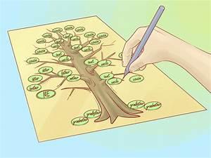 Einen Familienstammbaum zeichnen – wikiHow