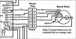 Sew Eurodrive Wiring