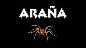 vids4ninos aprenda a decir la palabra araña en español