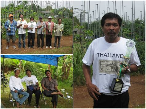 pbmg juara perkutut bekasi info konkurs farms perkutut