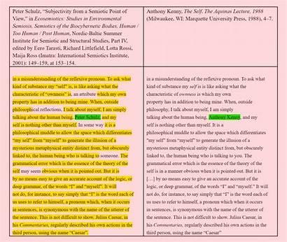 Peter Plagiarism Schulz Example Plagiarizes Philosophy Caught