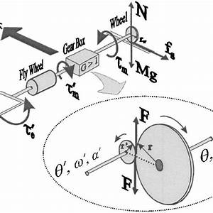 Draw The Free Body Diagram Of The Wheel