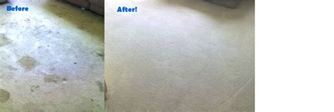 Upholstery Cleaning Colorado Springs by Premier Carpet Cleaning Carpet Cleaning In Colorado Springs