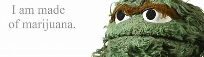 Grouch Oscar Meme Sesame Street Cool Resolution