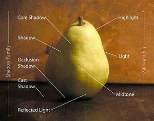 See The Light  In A Still Life Painting  That Is