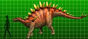 Tuojiangosaurus - Dinosaur King