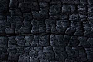 Burnt Wood Texture Free Stock Photo - Public Domain Pictures