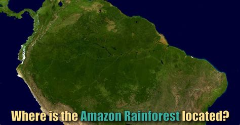 Where Is The Amazon Rainforest Located? Map & Facts