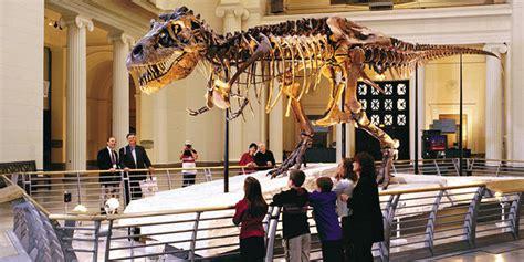 learning  museums harvard graduate school  education