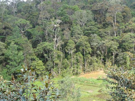 Botanischer Garten Bern Schule by Madagaskar Insel Der Vielfalt 5 November 2017 Verein