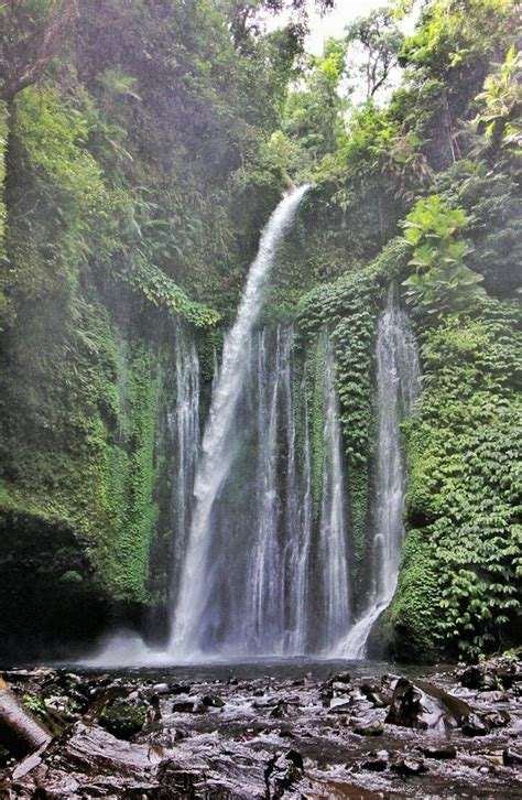 7 Best Tiu Kelep Waterfall Lombok Images On Pinterest