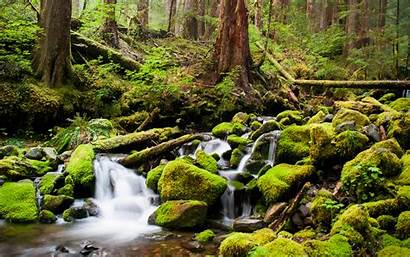 Stream Wallpapers Background Backgrounds Pc Desktop Themes