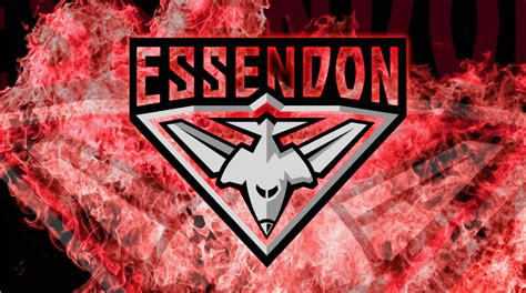 We are located along the moonee ponds creek between brisbane and fenton streets travancore. The Highs and Lows of the Essendon Bombers