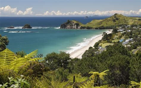 Hahei Nz's Most Expensive Beach To Visit  Travel Company