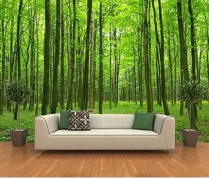 Hutan Forest Mural Dinding Untuk Lukisan Stick