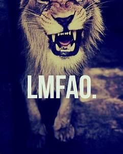 Lions Tumblr Quotes