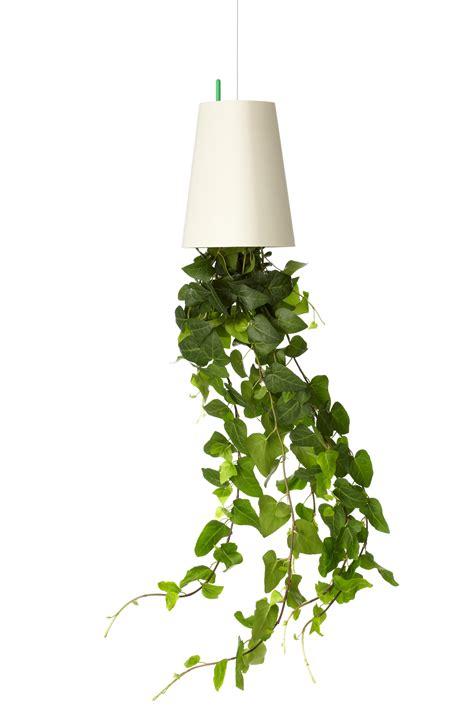 kitchen ceiling pot hangers hanging plants indoor ergonomic and stylish