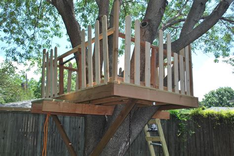 how to build a house how to build a tree house best house design how to build