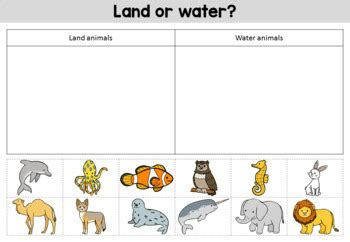 animal habitats worksheets by bright buttons teachers