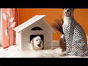 Hundehütte Für Drinnen : katzenhaus katzenh user catshome doovi ~ Michelbontemps.com Haus und Dekorationen