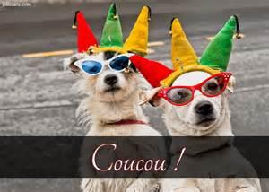 citations mariage cartes virtuelles chien chapeau carnaval joliecarte