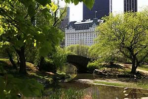 Central Park Auto Béziers : central park movie location pictures ~ Gottalentnigeria.com Avis de Voitures