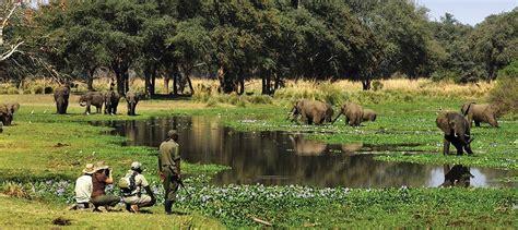zambia information trans africa safaris