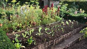 Plantes Amies Et Ennemies Au Potager : butte en permaculture permaculture pinterest ~ Melissatoandfro.com Idées de Décoration