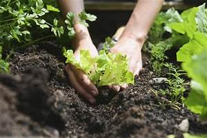 Gardening By The Moon39s Sign Dates Old Farmer39s Almanac