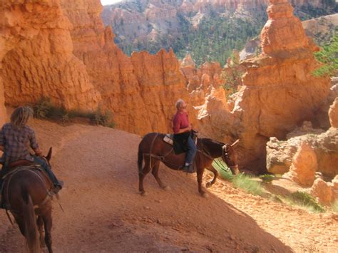 bryce horseback canyon bound riding westward