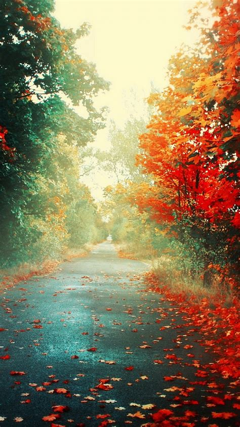Beautiful Autumn Wallpapers Iphone by Modern Free Iphone Wallpapers No 5 Premiumcoding