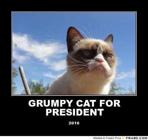 Grumpy Cat Meme Creator - evil cat meme generator image memes at relatably com