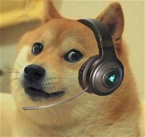 Doge Meme Template - doge cs go blank template imgflip