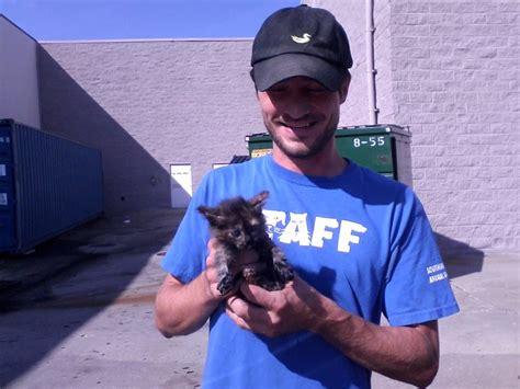 good samaritan  shelter staff rescue kitten trapped